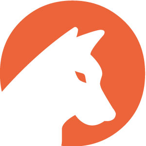 DingoLab - agenzia web a Bergamo