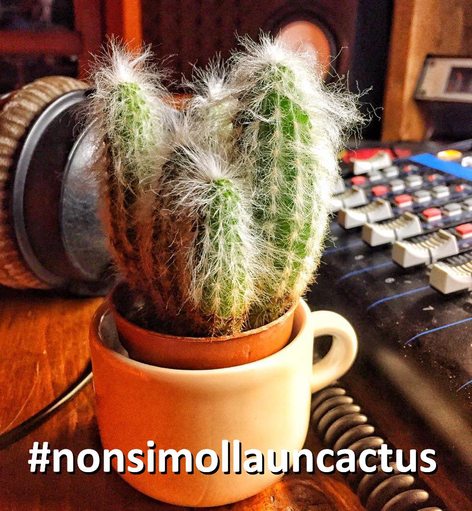 Leti #nonsimollauncactus